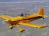 Ross Airshot